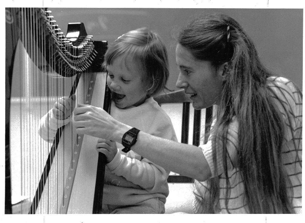 what is suzuki teaching? » suzuki harp info